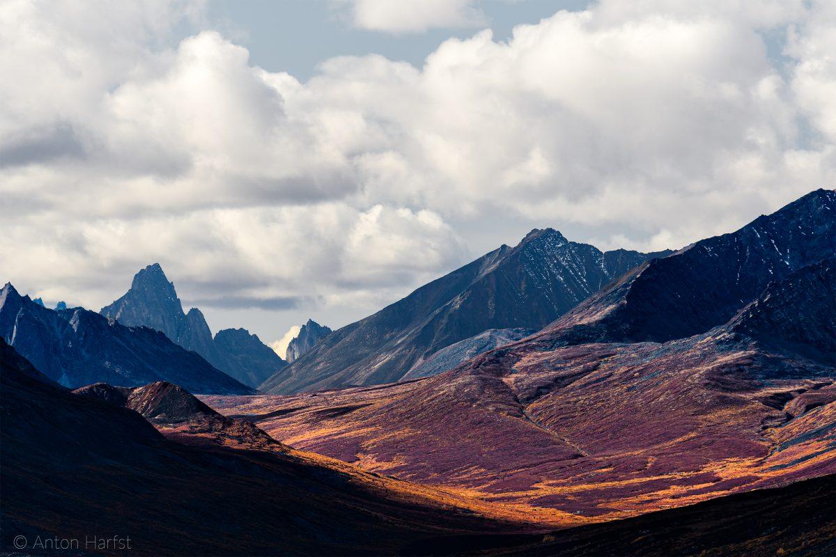 Tombstone Park, Yukon, Canada, Herfstkleuren