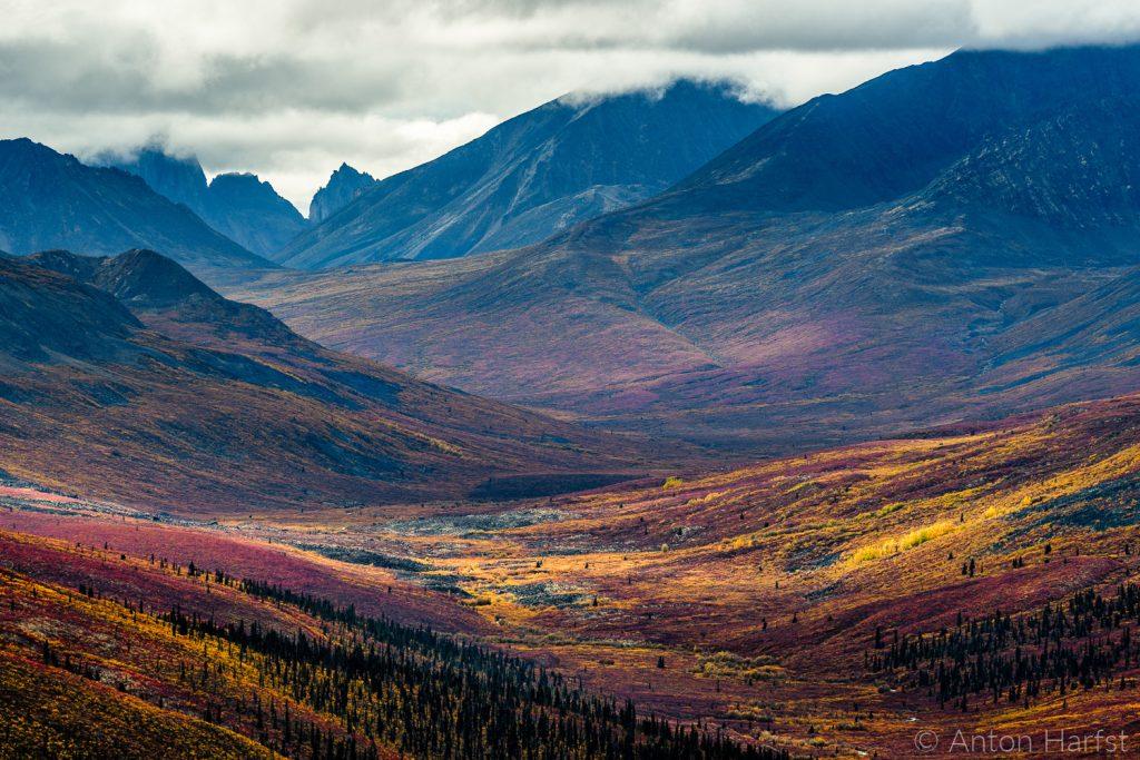 Yukon & Alaska individueel