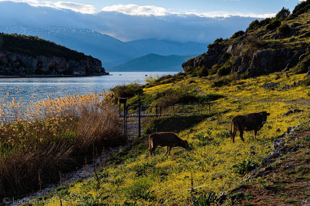 Wandelen langs de Prespes-meren Noord-Griekenland
