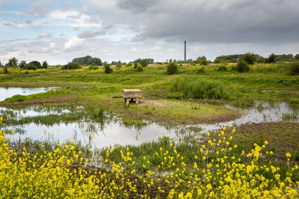 landschap met schoorsteen oude steenfabriek in uiterwaardenlandschap van de Ooijpolder