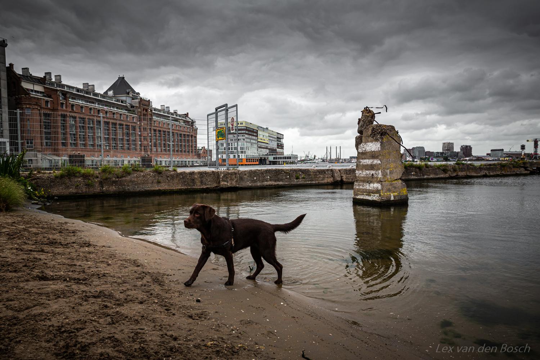 Fotowandeling Amsterdam-Centrum: van Rafelrand tot Justitiepaleis