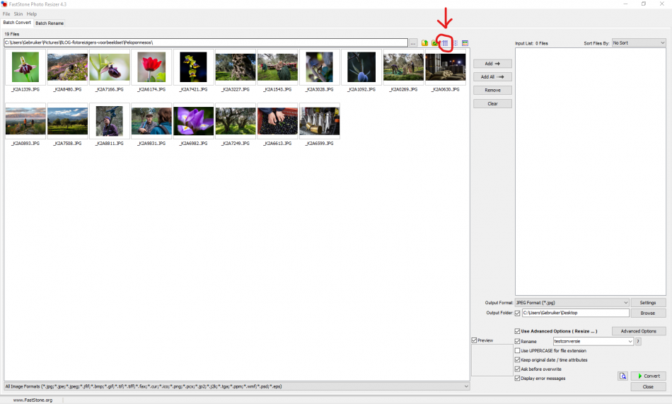 de report view knop in Faststone Photo Resizer voor een lijstweergave