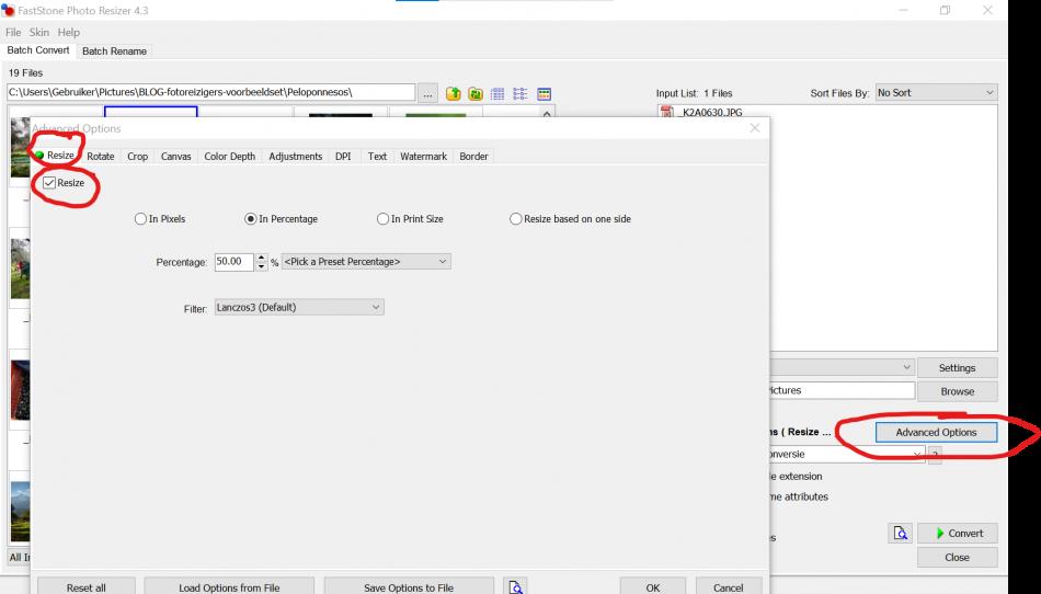 Het resize-tabblad in het advanced options window van Photo Resizer