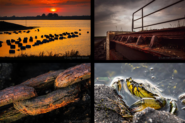 Tholen & Flipland: Detailfotografie